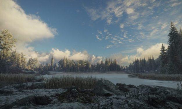 La soledad del cazador virtual