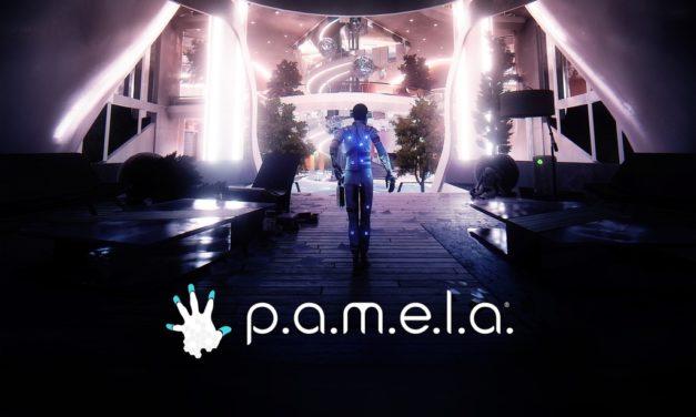 Análisis – P.A.M.E.L.A.